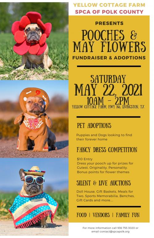 pooches and may flowers