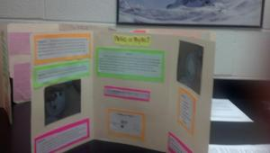 AP Bio mini-poster session