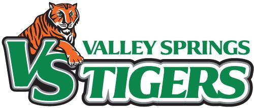 Valley Springs Basketball Plan