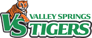 VS Tiger Logo