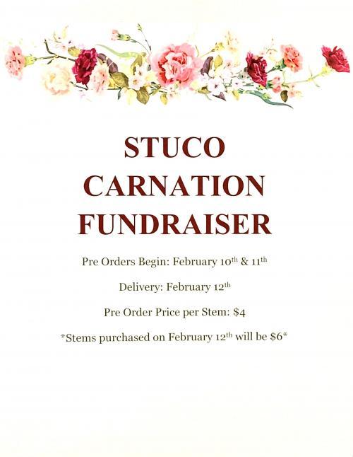 carnation fundraiser
