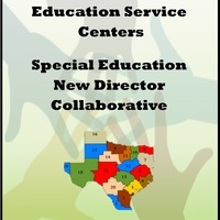 New Director Collaborative
