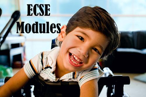 ECSE Modules