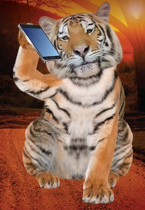Tiger on phone