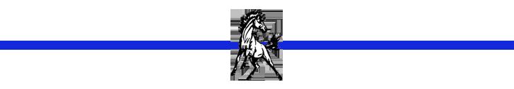 Mustang Divider