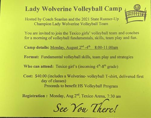 Texico Volleyball Camp Flyer