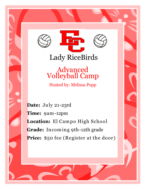 Advanced volleyball camp