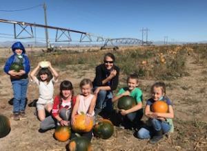 2020 pumpkin patch 2nd