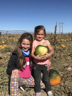 2020 pumpkin patch