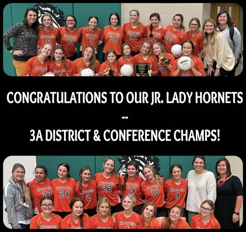 Lady Hornets Volleyball Team