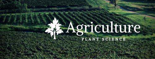Ag Plant Banner