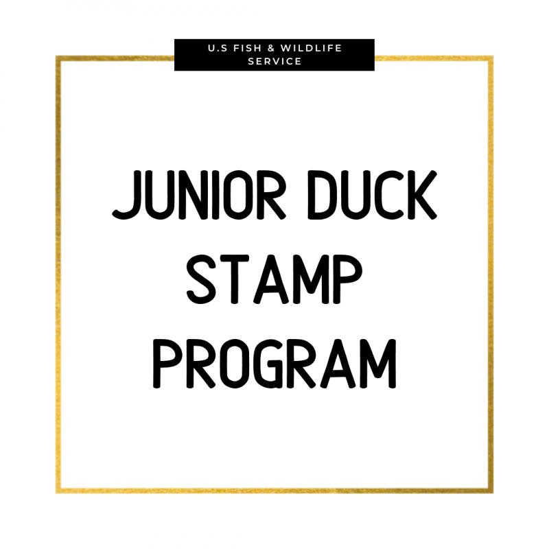 U.S. Fish & Wildlife Service Junior Duck Stamp Program