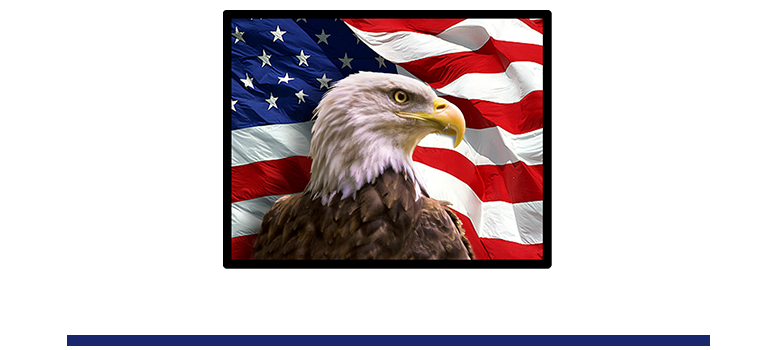 Freedom Elementary Logo