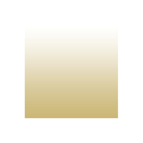 gold to white gradient track icon