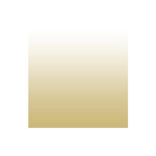 gold to white gradient basketball icon