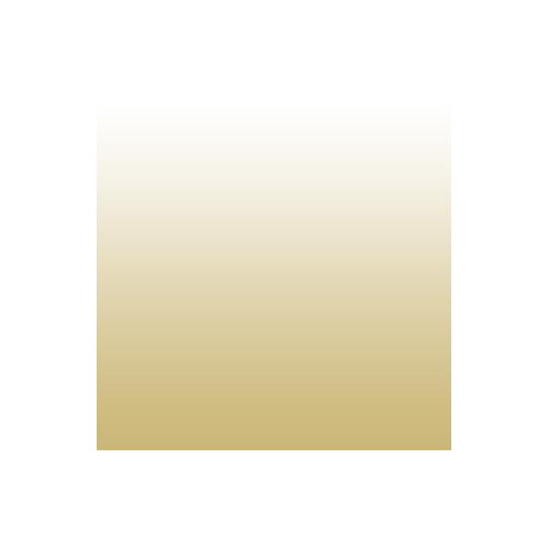 gold to white gradient archery icon