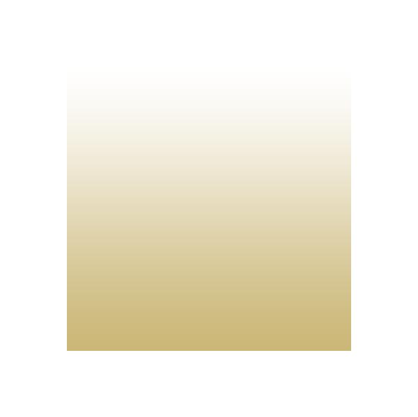 gold to white gradient softball icon