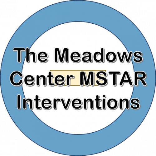 The Meadows Center MSTAR