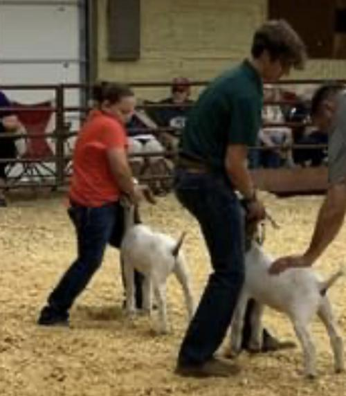 Adair County Fair 2021