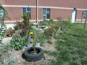 using recycled tires as plant protectors