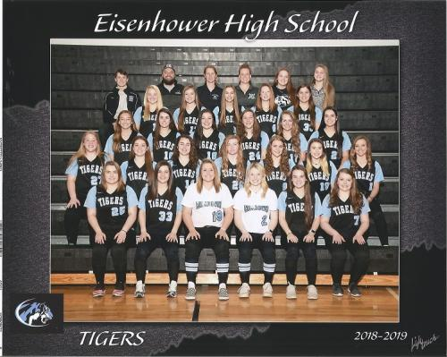 tigers 2019