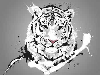 Tiger impression