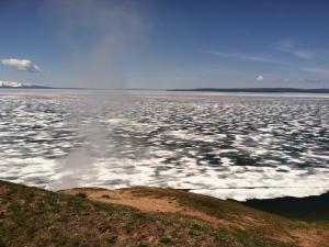 On the shores of Yellowstone Lake.