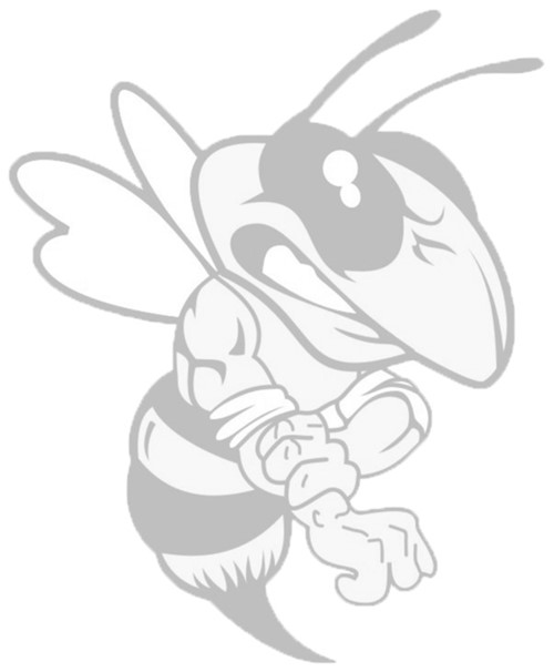 fighter bee