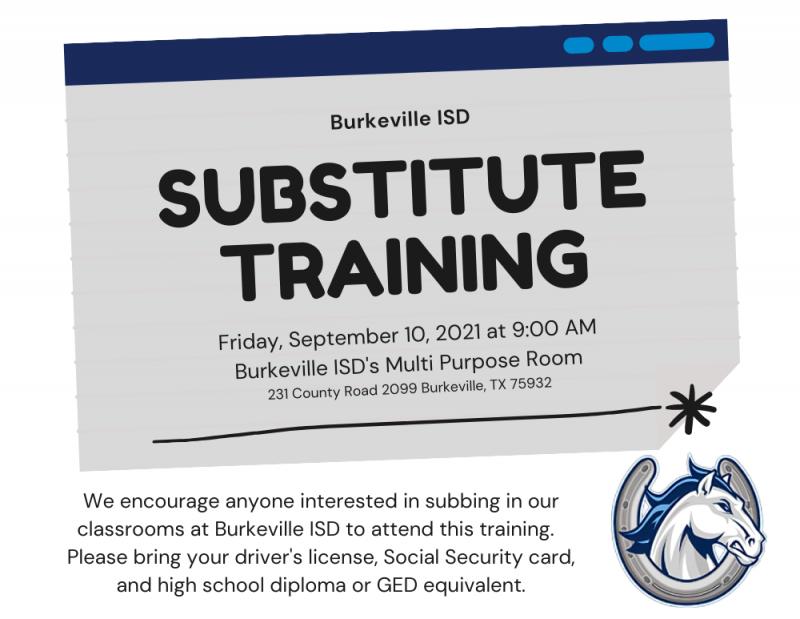 Substitute Training