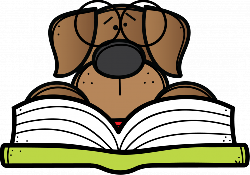 brown dog with book