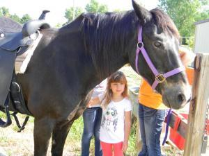 Gracie loves horses