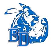 Bray-Doyle<br>Public Schools Logo