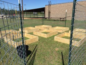 Plant and Soil Science garden project.