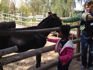 On the El Rancho Exotica field trip, Kiyona pets the z-donk.