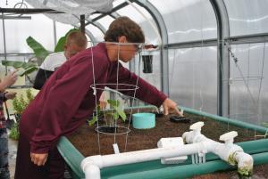 FACS class planting seeds