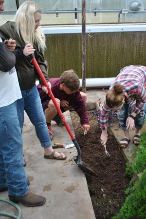 FACS class gets ready to transplant into ground grow bed