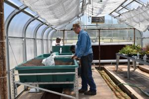 setting up the Aquaponic System