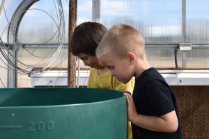 Kindergarteners visit the greenhouse