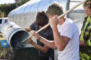 Freshmen making a strawberry tower