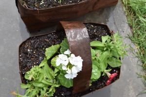 tin flower basket