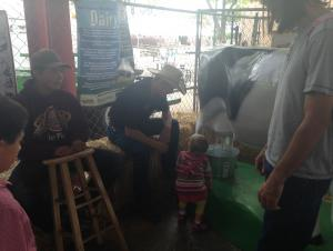 State Fair Red Barn: Teaching children about where milk comes from and how to milk a cow!