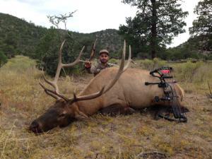 2014 archery elk