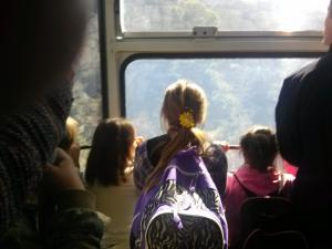 Taking in the view on the tram