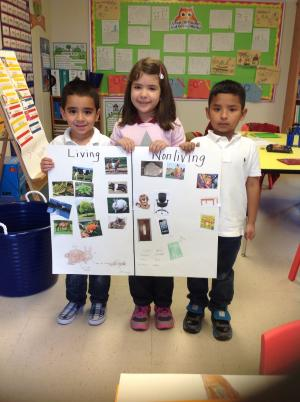 Mrs. Nieto's Kinder PBL How can you know if something is living or nonliving?
