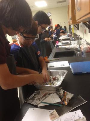 7th Grade Science PBL