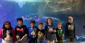 3rd grade field trip to the aquarium 2019