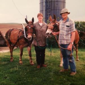 Me and my Dad with his beloved mules. He's gone but the mules are still on the Iowa farm :)