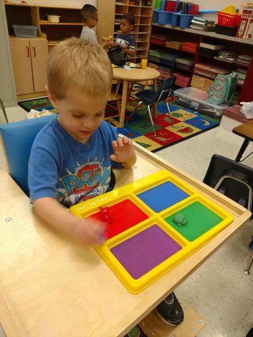 Brayden sorting by color- math