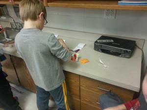 Force and Motion Lab: Colter