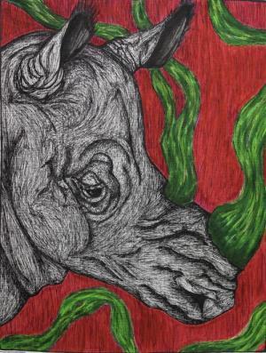 Rhino in mixed media, by Cadence J.